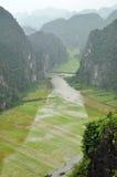 Взгляд панорамы полей и известковых скал риса и от вида m Стоковая Фотография