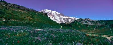 Взгляд панорамы следа неба в национальном парке Mt более ненастном Стоковое Изображение