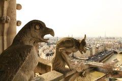 Париж, собор Нотр-Дам. Стоковое Изображение RF