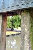 взгляд парка озера шлюпки Стоковое Фото