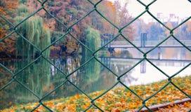 Взгляд парка осени над плетением стоковое фото rf