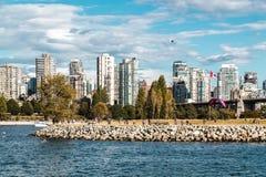 Взгляд парка Vanier от пляжа Kitsilano в Ванкувере, Канаде Стоковые Изображения RF