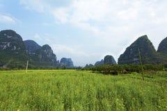 взгляд пейзажа поля contry, графство Yangshuo Стоковые Изображения