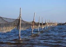 Взгляд перспективы рыболовной сети установил к деревянным полякам Стоковое фото RF