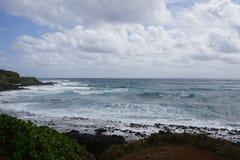 Взгляд побережья с утесами Стоковые Изображения RF