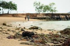 Взгляд побережья утеса на пляже Стоковое Изображение