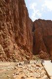 Взгляд портрета каньона ущелья Todgha на реке в высоких горах атласа, Марокко Dadès стоковые фото