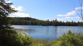 Взгляд прибрежной полосы озера Стоковые Изображения RF
