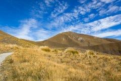 Взгляд пропуска Lindis, Новая Зеландия Стоковые Изображения