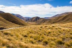 Взгляд пропуска Lindis, Новая Зеландия Стоковая Фотография