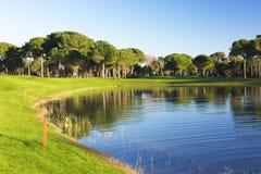 Взгляд пруда на поле для гольфа Стоковые Изображения