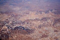 Взгляд 1 птицы Стоковые Фото