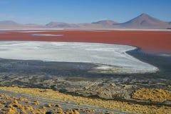 Взгляд пустыни соли в Боливии - лагуне Колорадо Стоковое Изображение RF