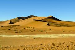 Взгляд пустыни Namib Стоковая Фотография RF