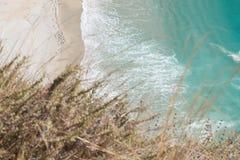 Взгляд пляжа Калифорнии от скалы с естественным передним планом Стоковая Фотография RF