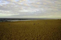 Взгляд пляжа трески накидки городка Провансали Стоковые Фото