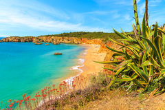 Взгляд пляжа da Rocha Прая Стоковые Изображения