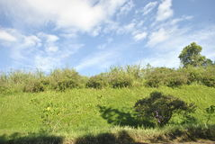 Взгляд рая Стоковое Фото