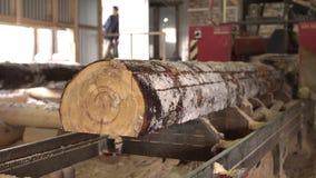Взгляд древесины sawing на лесопилке, конец-вверх акции видеоматериалы
