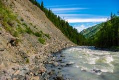 Взгляд реки и скалистого покрытого scree леса в горах Стоковые Фотографии RF
