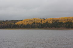 Взгляд реки осени с берегом Стоковые Фото