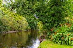 Взгляд реки Cong от банка реки в деревне Стоковое Изображение