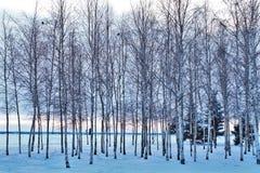 Взгляд русского зимы Стоковые Изображения