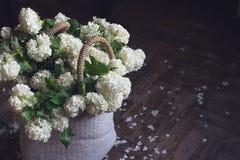 Взгляд сверху белых цветков в плетеной сумке Стоковое Фото