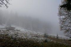 взгляд сверху горы Темные ые-зелен наклоны и холмы Карпатов Славный взгляд гор над красивейшими облаками птиц цветы раньше летают стоковое изображение rf