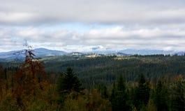 взгляд сверху горы Темные ые-зелен наклоны и холмы Карпатов Славный взгляд гор над красивейшими облаками птиц цветы раньше летают стоковая фотография rf