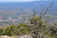 взгляд сверху горы montseny montserrat Стоковое Изображение RF