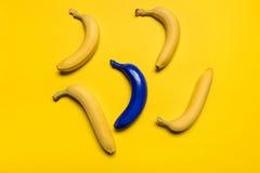 Взгляд сверху голубых и желтых бананов изолированных на желтом цвете Стоковые Изображения RF