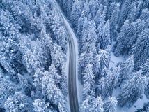 Взгляд сверху леса и дороги зимы стоковое изображение rf