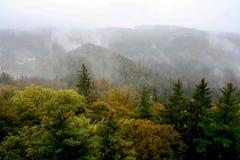 Взгляд сверху леса осени Стоковые Изображения RF