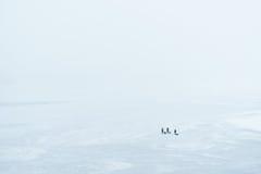 Взгляд сверху замороженного реки, и рыболовы на льде Стоковое Фото