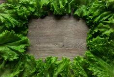 Взгляд сверху зеленого салата на деревянной предпосылке Стоковое фото RF