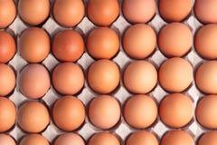 Взгляд сверху коричневых яичек цыпленка для предпосылки Стоковые Фотографии RF