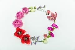 Взгляд сверху красивого флористического венка с розами и маками Стоковая Фотография RF