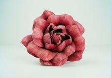 Взгляд сверху красной розы Стоковые Фото