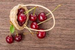 Взгляд сверху красных зрелых ягод вишни разбросало от корзины для того чтобы посватать Стоковое Изображение RF