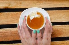Взгляд сверху кружки травяного чая и жасмина цветет на деревянном столе, космосе для текста Стоковые Фото