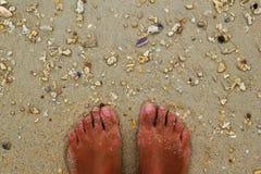 Взгляд сверху на ногах на seashore с камнями и seashells на песке Стоковые Изображения