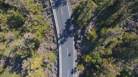 Взгляд сверху на дороге в лесе горы сток-видео