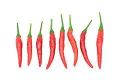 Взгляд сверху перца красных чилей на белизне Стоковые Фото
