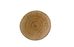Взгляд сверху пня дерева изолированного на белой предпосылке Стоковая Фотография RF