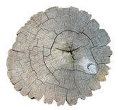 Взгляд сверху постаретого изолированного пня дерева Стоковая Фотография