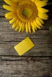 Взгляд сверху пустой желтой поздравительной открытки и красивого зацветать Стоковые Изображения RF