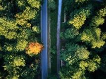 Взгляд сверху пути через деревья Взгляд от воздушного шара Взгляд дороги сверху принятый quadrocopter Стоковая Фотография