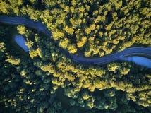 Взгляд сверху пути через деревья Взгляд от воздушного шара Взгляд дороги сверху принятый quadrocopter Стоковые Фотографии RF