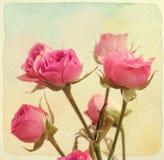 взгляд сверху роз букета ретро сбор винограда типа Стоковые Фото